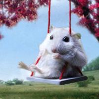 Publicare - 8 Tipps zum Umgang mit Download-Hamstern und Flüchtermeisen