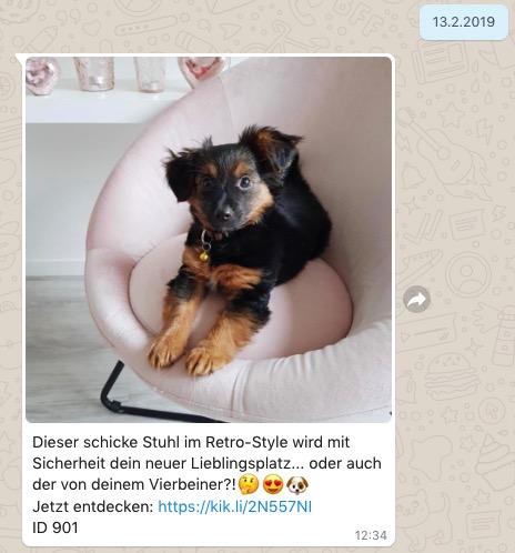 Whatsapp Beispiel KIK