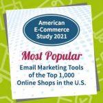 ecommerce study us top 1000